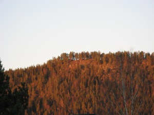 kongsberg-269-3